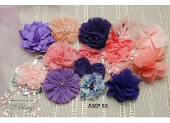 Mix Assorted pack (AMP 53), Coral, Purple