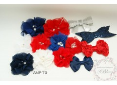 Mix Assorted pack (AMP 79) Red & Blue