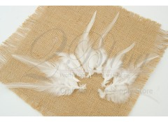 Loose Feather, Coque Rooster, White, Short  (Pack of 20)